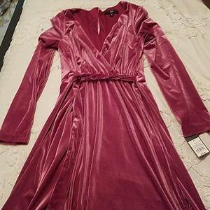 Like velvet, pink long sleeve dress.